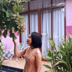 Отель Pink House Homestay Вьетнам, Хойан - отзывы, цены и фото номеров - забронировать отель Pink House Homestay онлайн спа