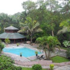 Отель Safari Adventure Lodge Непал, Саураха - отзывы, цены и фото номеров - забронировать отель Safari Adventure Lodge онлайн бассейн фото 2