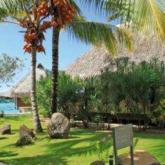 Отель Hilton Moorea Lagoon Resort and Spa Французская Полинезия, Муреа - отзывы, цены и фото номеров - забронировать отель Hilton Moorea Lagoon Resort and Spa онлайн фото 6