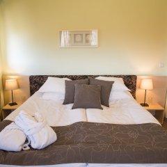 Отель SG Seven Seasons Hotel & Spa Болгария, Банско - отзывы, цены и фото номеров - забронировать отель SG Seven Seasons Hotel & Spa онлайн комната для гостей фото 3