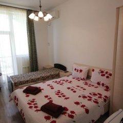 Мини-отель Папайя Парк Стандартный номер с разными типами кроватей фото 10