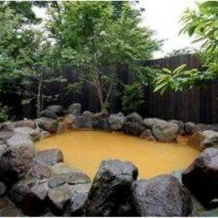 Отель Auberge Cosmos Минамиогуни бассейн