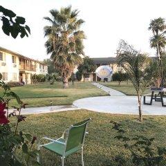 Отель 99 Palms Inn & Suites фото 8