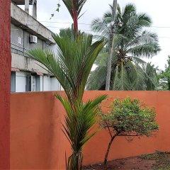 Отель YoYo Hostel Шри-Ланка, Негомбо - отзывы, цены и фото номеров - забронировать отель YoYo Hostel онлайн фото 3