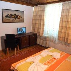 Отель Family Hotel Tangra Болгария, Видин - отзывы, цены и фото номеров - забронировать отель Family Hotel Tangra онлайн удобства в номере