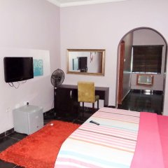 Отель Topaz Lodge удобства в номере фото 2