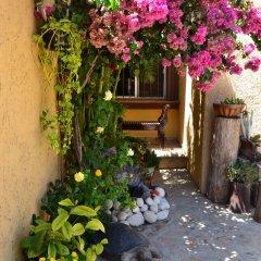 Отель Casa Diva Bed & Breakfast Мексика, Сан-Хосе-дель-Кабо - отзывы, цены и фото номеров - забронировать отель Casa Diva Bed & Breakfast онлайн фото 2