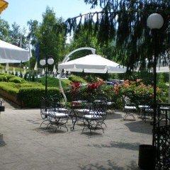 Отель Perfect Болгария, Правец - отзывы, цены и фото номеров - забронировать отель Perfect онлайн фото 4