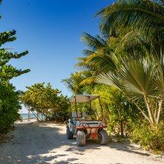 Отель Villas HM Paraíso del Mar Мексика, Остров Ольбокс - отзывы, цены и фото номеров - забронировать отель Villas HM Paraíso del Mar онлайн пляж