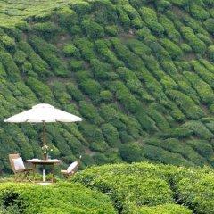 Отель Cameron Highlands Resort фото 6