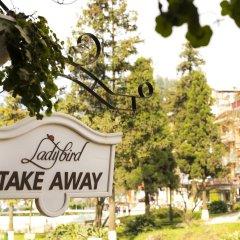 Отель Ladybird Sapa Hotel Вьетнам, Шапа - отзывы, цены и фото номеров - забронировать отель Ladybird Sapa Hotel онлайн