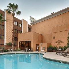 Отель Best Western Plus Casino Royale США, Лас-Вегас - отзывы, цены и фото номеров - забронировать отель Best Western Plus Casino Royale онлайн с домашними животными