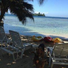 Отель Tamanu Французская Полинезия, Папеэте - отзывы, цены и фото номеров - забронировать отель Tamanu онлайн пляж фото 3
