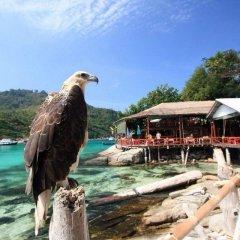 Отель Bungalow Raya Resort пляж фото 2