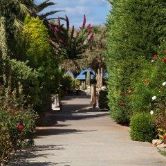 Отель Cretan Malia Park фото 4