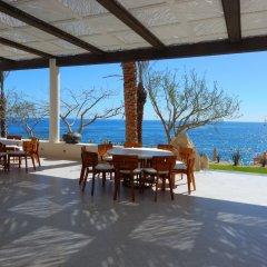 Отель Chileno Bay Resort & Residences Кабо-Сан-Лукас фото 3