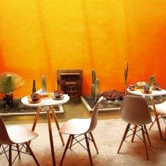 Отель Coyoacan-inn Guesthouse Мексика, Мехико - отзывы, цены и фото номеров - забронировать отель Coyoacan-inn Guesthouse онлайн фото 10