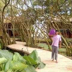 Отель Tangerine Beach Шри-Ланка, Калутара - 2 отзыва об отеле, цены и фото номеров - забронировать отель Tangerine Beach онлайн фото 2