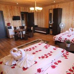 Мини-отель Папайя Парк Стандартный номер с разными типами кроватей фото 12
