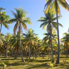 Отель Pension Justine Французская Полинезия, Тикехау - отзывы, цены и фото номеров - забронировать отель Pension Justine онлайн фитнесс-зал