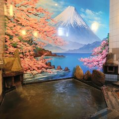 Отель Dormy Inn Soga Natural Hot Spring Тиба комната для гостей фото 3