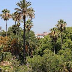 Отель Botanic Views Guest House Лиссабон фото 4