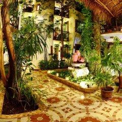 Отель Posada Mariposa Boutique Плая-дель-Кармен фото 3