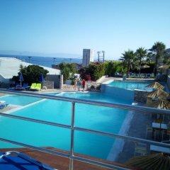 Sirene Beach Hotel - All Inclusive с домашними животными