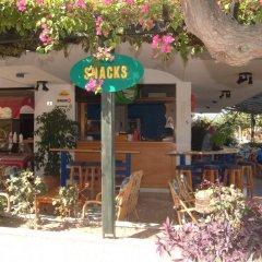 Отель Galaxy Греция, Кос - отзывы, цены и фото номеров - забронировать отель Galaxy онлайн фото 6