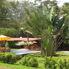 Отель Chachagua Rainforest Ecolodge фото 17