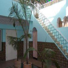 Отель Dar Jameel Марокко, Танжер - отзывы, цены и фото номеров - забронировать отель Dar Jameel онлайн фото 4