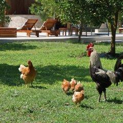Отель Arcadia Villas Кемер с домашними животными