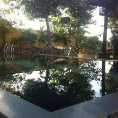Отель Tea Garden Homestay Хойан приотельная территория