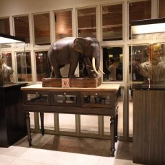 Отель SWANA Бангкок гостиничный бар