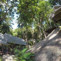 Отель Ao Muong Beach Resort фото 7