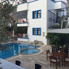Lizo Hotel Турция, Калкан - отзывы, цены и фото номеров - забронировать отель Lizo Hotel онлайн с домашними животными