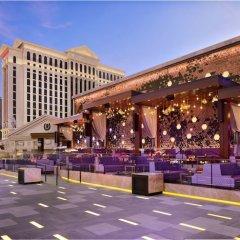 Отель Caesars Palace США, Лас-Вегас - 8 отзывов об отеле, цены и фото номеров - забронировать отель Caesars Palace онлайн городской автобус