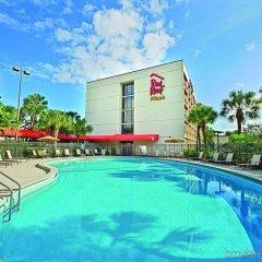 Отель Red Roof Inn PLUS+ Miami Airport бассейн