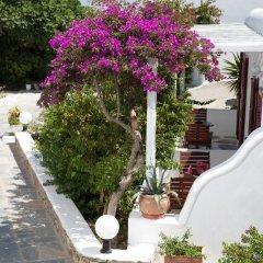 Отель Domna Греция, Миконос - отзывы, цены и фото номеров - забронировать отель Domna онлайн фото 4