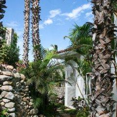 Отель Casa Juan Мексика, Сан-Хосе-дель-Кабо - отзывы, цены и фото номеров - забронировать отель Casa Juan онлайн