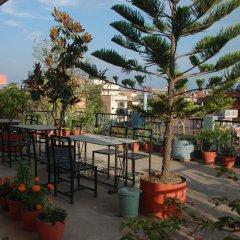 Отель Kathmandu Madhuban Guest House Непал, Катманду - 1 отзыв об отеле, цены и фото номеров - забронировать отель Kathmandu Madhuban Guest House онлайн гостиничный бар