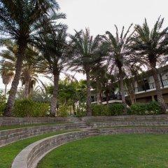 Отель JA Palm Tree Court фото 3