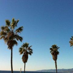 Отель Venice Beach Suites & Hotel США, Лос-Анджелес - отзывы, цены и фото номеров - забронировать отель Venice Beach Suites & Hotel онлайн приотельная территория