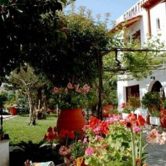 Summer Lodge in Agia Marina, Greece from 64$, photos, reviews - zenhotels.com photo 3