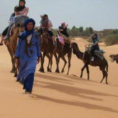Отель Kasbah Bivouac Lahmada Марокко, Мерзуга - отзывы, цены и фото номеров - забронировать отель Kasbah Bivouac Lahmada онлайн приотельная территория фото 2