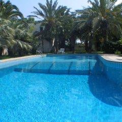 Отель Cuore Di Palme Флорида бассейн фото 2