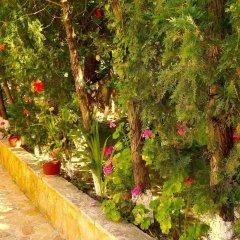Отель Mirabelle Hotel Греция, Аргасио - отзывы, цены и фото номеров - забронировать отель Mirabelle Hotel онлайн