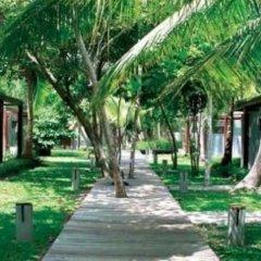 Отель Cocotero Resort The Hidden Village by Costa Lanta Таиланд, Ланта - отзывы, цены и фото номеров - забронировать отель Cocotero Resort The Hidden Village by Costa Lanta онлайн фото 9