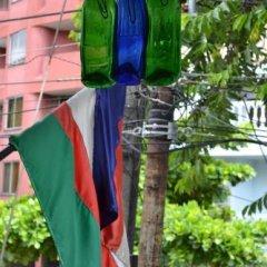 Отель Hostal Pajara Pinta фото 4