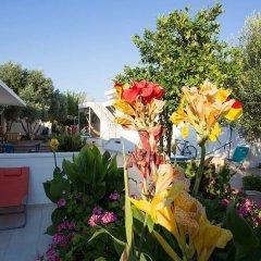 Urla Surf House Турция, Урла - отзывы, цены и фото номеров - забронировать отель Urla Surf House онлайн бассейн фото 2